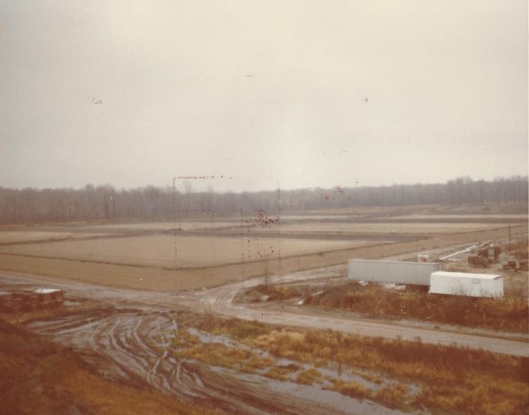 Fields 11_79